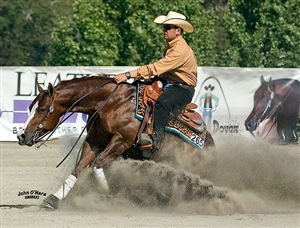 2012 NRHA Open Derby Res. Champion Tinker With Guns & Andrea Fappani
